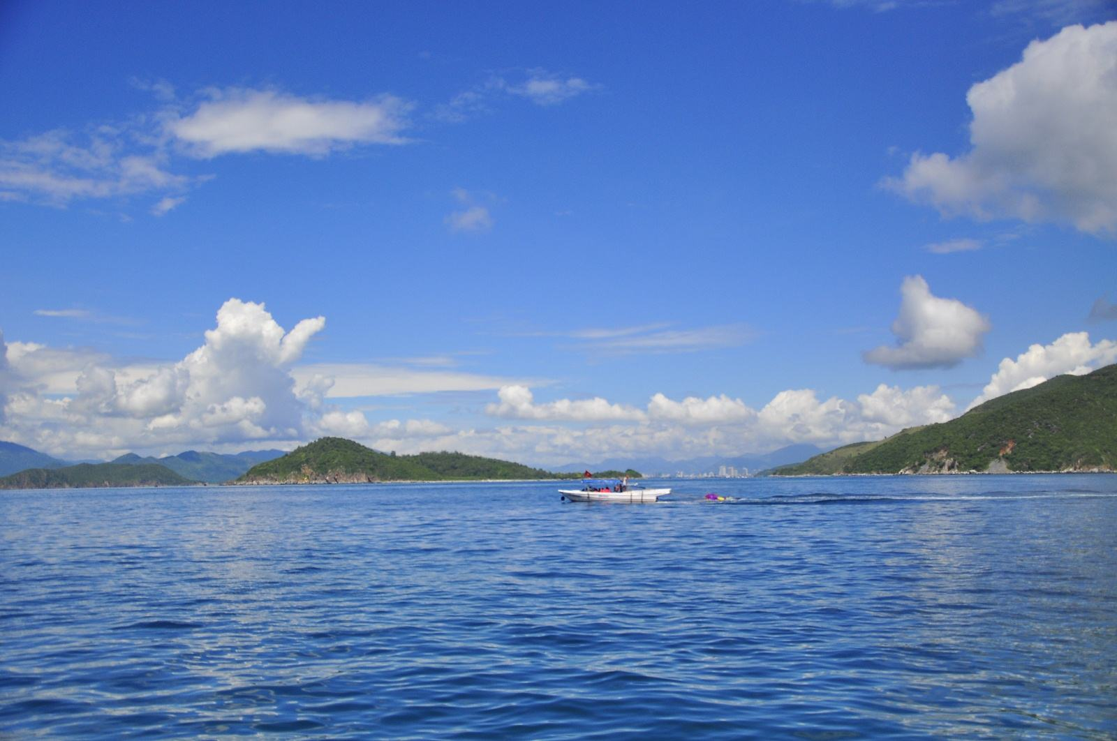下午乘船返程途经【海燕岛】,海燕岛因岛上生活大量海燕而得名.