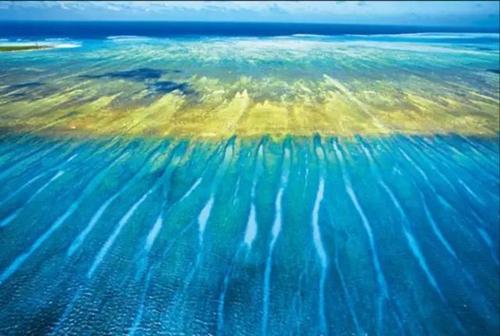 您可以在海里尽情游弋畅游碧海蓝天您还可以欣赏到蚕岛五星酒店特有