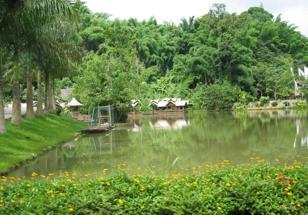 昆明蝴蝶园风景区图片